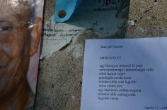 Kányádi Sándor versét Szeifert Nat posztolta