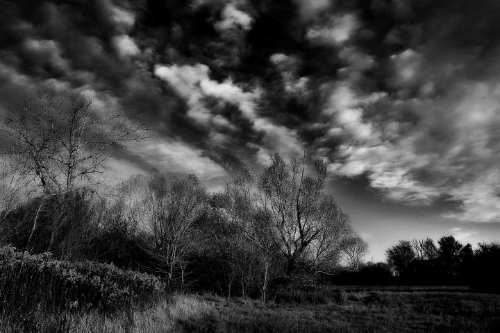 Ártéri rét felhőkkel