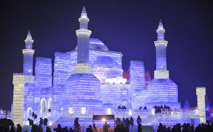 Harbin_Internation_rex8