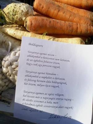 eva-vassne-kokeny-kecskemet-petofi-sandor-utcai-piac-2015-2